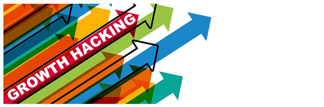 launch business websites
